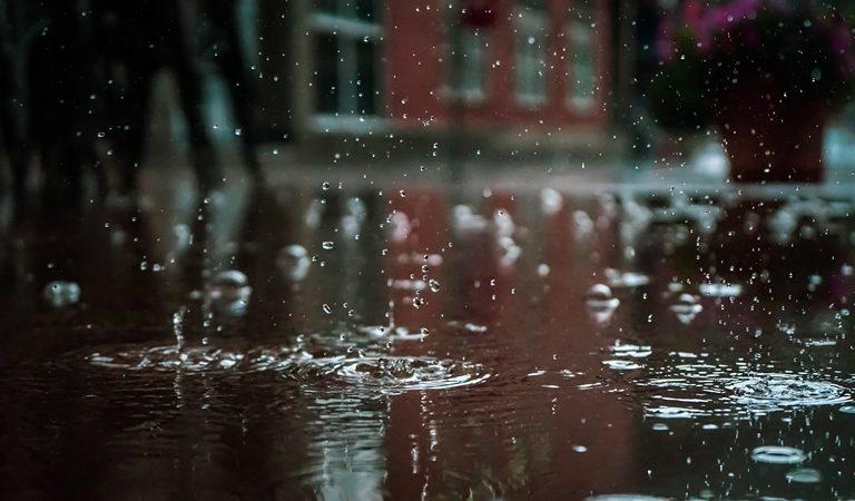 zbieranie wody deszczowej